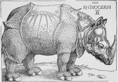 Story of the rhino print by Albrecht Durer at Biltmore Estate