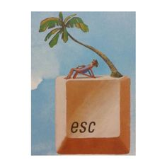 #esc NOW! #palmtrees #enjoy #CCS