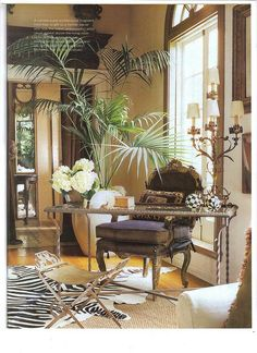 Tropical British Colonial Interiors; Desk and office space with zebra rug
