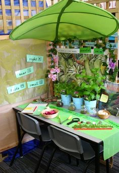 "Set up a ""Nature Table"" to display all the treasures found on nature hikes... great for scientific observations.  {The large leaf is from IKEA.}"