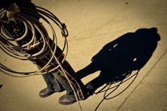 Lasso by Calgary Stampede