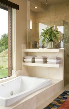bath tub w/shelves in between shower & basin