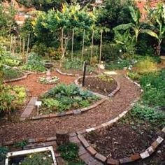 Permaculture Guilds: The Basics ~ A permaculture guild is the intentional…