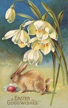 Vintage Easter card...