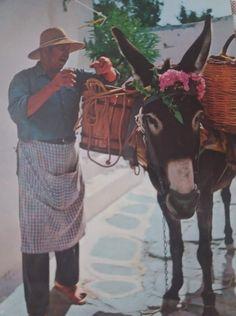 Paros, Painting, Painting Art, Paintings, Painted Canvas, Drawings