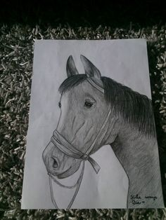 Horse drawing by ME ♥