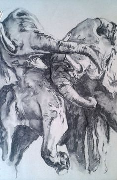 fighting elephants | drawing | natural charcoal | 35 x 45 cm | 2014 | Barbora Oudesová Bara Ou
