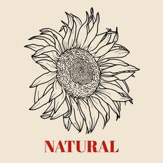 Body Types, Nature, Inspiration, Fashion Styles, Biblical Inspiration, Naturaleza, Body Shapes, Nature Illustration, Off Grid