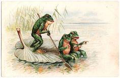 Post Card Frogs Paddling On Lilly Pad