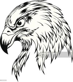 Eagle Drawing, Line Drawing, Drawing Sketches, Eagle Head Tattoo, Eagle Tattoos, Bird Drawings, Animal Drawings, Drawings Of Eagles, Ave Tattoo