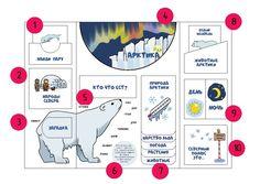 Лэпбук для детей по географии. Тема Арктика и Северный полюс. Скачать файлы для распечатки и инструкцию, как его сделать.