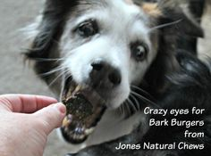 Bark Burgers, the latest from Jones Natural Chews