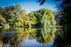 The Pond at Graceland Cemetery, by Raf Winterpacht on 500px