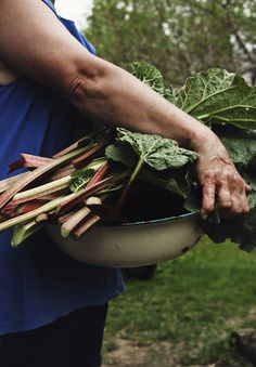 Rhubarb Rhubarb Rhubarb - I'm definitely picking and cooking lots at the moment! Particularly fond of rhubarb fool but going to try making a rhubarb mojito I think ...