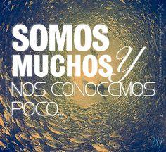 """Somos muchos y nos conocemos poco"""" Frases: Hey Frank! #Quotes #Spanish"""