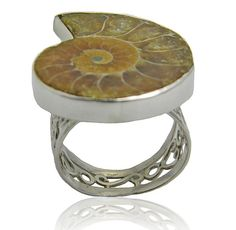Sterling Sivler Ring with Amonite Fossil