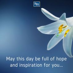 May this day bring comfort to you. Happy Easter, Bring It On, Quotes, Happy Easter Day, Quotations, Quote, Shut Up Quotes
