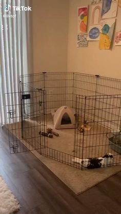 Indoor Rabbit Cages, Rabbit Cage Diy, Indoor Bunny House, Diy Bunny Cage, Bunny Cages, Rabbit Playpen, Pet Rabbit, Diy Bunny Hutch, Rabbit Habitat