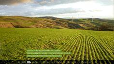 La corrente dell'aria come energia rinnovabile, l'eolico contribuisce agli obiettivi di sostenibilità ambientale perseguiti dalle politiche nazionali ed europee.  #ruraland #comunicareilrurale #ruralandwed #ruraland4 #tradizioni #acqua #biodiversità #clima #energia #paesaggio #bellezza #sprecozero #risorsenaturali #ambiente #eolico #greeneconomy  Ancora 86 giorni e anche tu potrai partecipare al ruralandWED.  www.ruraland4.it