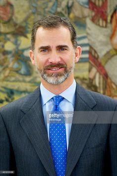 King Felipe VI of Spain receives Comite de Direccion de la Federacion Nacional de Asociaciones de Trabajadores Autonomos (ATA) at Zarzuela Palace on January 20, 2015 in Madrid, Spain.