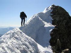 Nice! Albino Peacock, K2, Climbing, Mount Everest, Mountains, Nice, Nature, Travel, Mountaineering