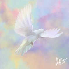 Dove flying to heaven print rainbow bird wings angel. $20.00, via Etsy.