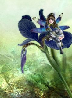 Miharu Yokota is an artist from Tokyo, Japan. She created the whimsical fairy and fantasy paintings for children fused with Japanese traditional elements, which is absolutely beautiful. Fairy Paintings, Fantasy Paintings, Fantasy Kunst, Fantasy Art, Elves And Fairies, Art Japonais, Love Fairy, Beautiful Fairies, Flower Fairies