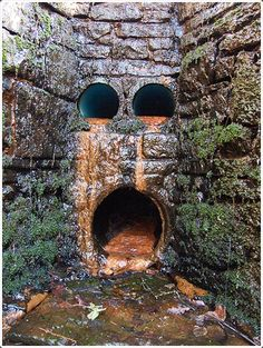 Facebook Twitter Google+ Pinterest StumbleUpon Funny and Weird Faces Found in the Everyday Places