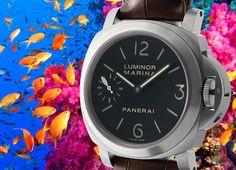 """Gold Fish All Around!"" Officine #Panerai 44mm Luminor Marina Titanium O Series 2014 Ref#: PAM 177  ($6,125.00 USD) http://www.elementintime.com/Officine-Panerai-Luminor-PAM-177-Titanium-Black-And-Green-Sandwich-Dial"