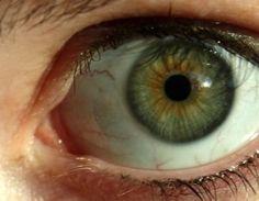 1000 images about eye color chart on pinterest eye. Black Bedroom Furniture Sets. Home Design Ideas