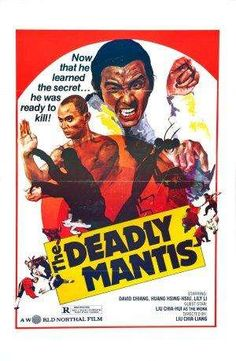 Old Kung Fu Movies | top-20-classic-kung-fu-movies-of-all-time.jpg