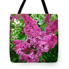 Marina Usmanskaya Tote Bag featuring the photograph Blooming Lilac by Marina Usmanskaya #MarinaUsmanskayaFineArtPhotography #Lilac #ArtForHome #FineArtPrints