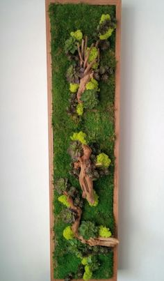 Preserved moss Wall Art, REC-1040