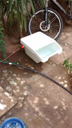 Auto water feeder for dogs