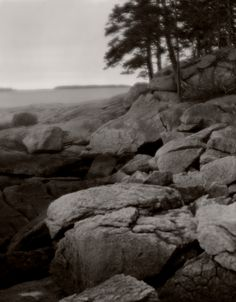 https://flic.kr/p/sq3eTr | img957 | Rocky shore and woods at Birch Point Beach state park, Owls Head Maine. April 2015.  4x5 speed graphic with Gundlach Hyperion soft focus lens, fp4+ film in pyrocat hd