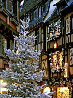 winter in colmar, alsace, france | Christmas ~ Colmar ~ France | Joyeux Noel | Pinterest