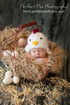 "Baby Chick...I might have to make a hat like this for my next little ""chicken"". :) adorable!!"