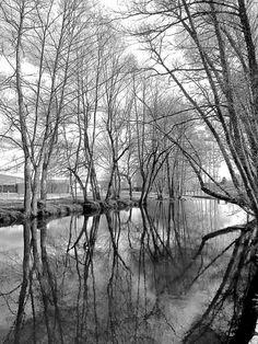 Paseo fluvial de Maceda - Ourense