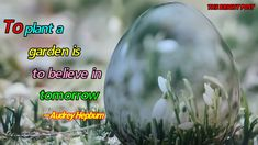 To plant a garden is to believe in tomorrow. Easter Quotes, Hope Symbol, Christian Faith, Audrey Hepburn, Garden Plants, Quote Of The Day, Christianity, Meant To Be, Believe