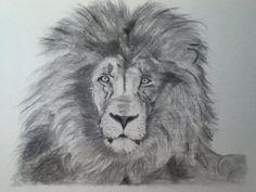 """""""El rey de la selva""""  Carboncillo sobre papel"""