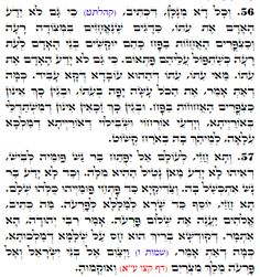 Daily Zohar # 1878 – Devarim – One times a thousand One Time, Your Word, Spirituality, Teaching, Words, Times, Spiritual, Education, Horse