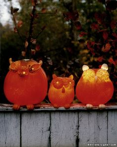 Owl pumpkins!  Maybe I can make some to sit on my balcony railing this year!