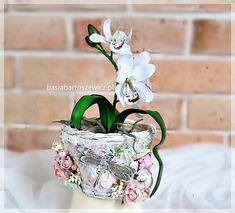 Coasters, Planter Pots, Plants, Home Decor, Decoration Home, Room Decor, Coaster, Plant, Home Interior Design