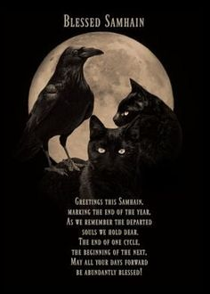 Wiccan Sabbats, Pagan, Blessed Samhain, Departed Soul, Black Cat Art, Black Cats, Cycle Of Life, Witch House, We Remember