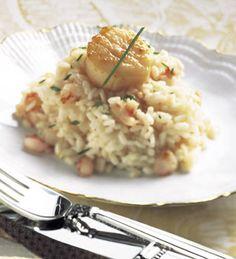 Seared Scallops on Shrimp and Truffle Risotto