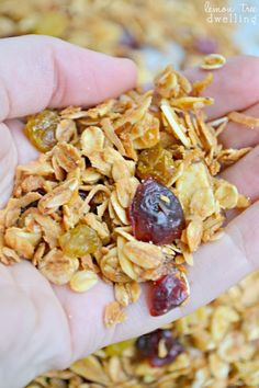 Harvest #Granola made with sliced almonds, golden raisins, craisins, and shredded coconut. A delicious and sweetly satisfying #breakfast or ...
