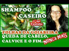 SHAMPOO CASEIRO C/ AS FOLHAS DA GOIABEIRA, ADEUS QUEDA DE CABELO/ Elisa...