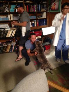 Alex O'Loughlin with his dog on the set of Hawaii Five-0.