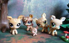 LPs Deer | Littlest Pet Shop deer figures Lps Littlest Pet Shop, Little Pet Shop Toys, Little Pets, Lps Pets, Deer Family, Plastic Animals, Cute Toys, Custom Lps, Shopkins