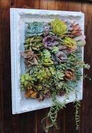 Resultado de imagen para pinterest arte en suculentas